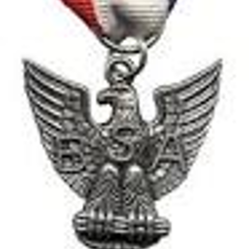 homepage-badges | Dan Beard Eagle Scout Association